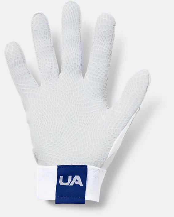 Men's UA Yard Baseball Gloves, White, pdpMainDesktop image number 1