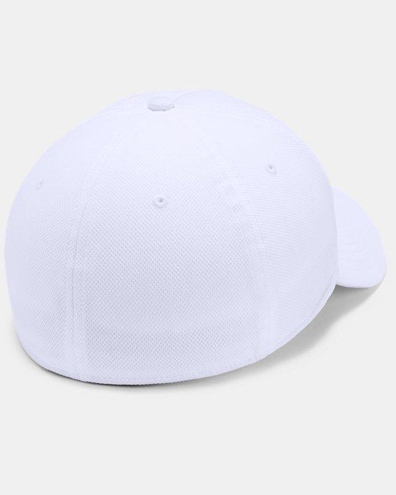 Men's UA Blitzing Blank Cap, White, pdpMainDesktop image number 1