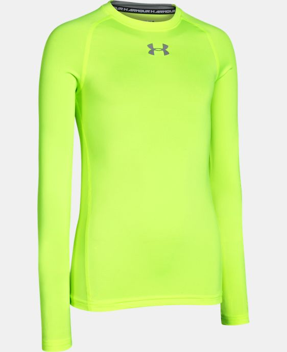 Boys' UA HeatGear® Armour Long Sleeve Fitted Shirt   $17.24