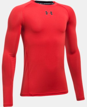 Boys' UA HeatGear® Armour Long Sleeve Fitted Shirt   $29.99