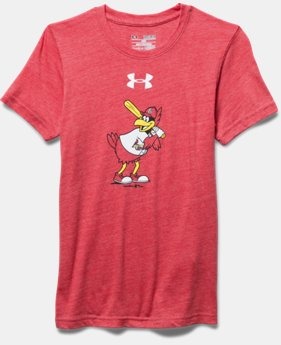 Boys' St. Louis Cardinals Vintage Tri-Blend T-Shirt