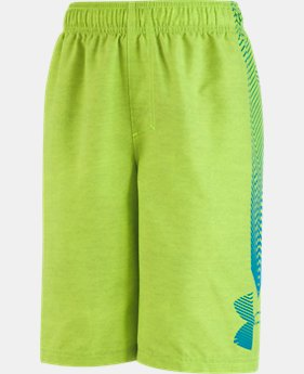 Boys' Toddler UA Big Logo Volley   $27