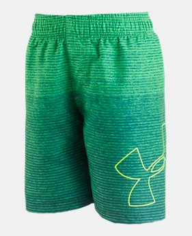 2efd27dee2 Boys' Kids (Size 8+) Board Shorts | Under Armour CA