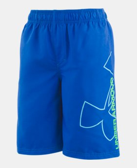 a52a23bcfa67b Boys  Kids (Size 8+) Board Shorts