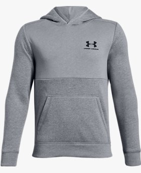 Boys' UA Cotton Fleece Hoodie